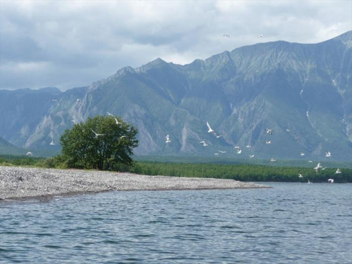 По серверу Байкала на байдарках  (17 июля - 14 августа 2010г.)
